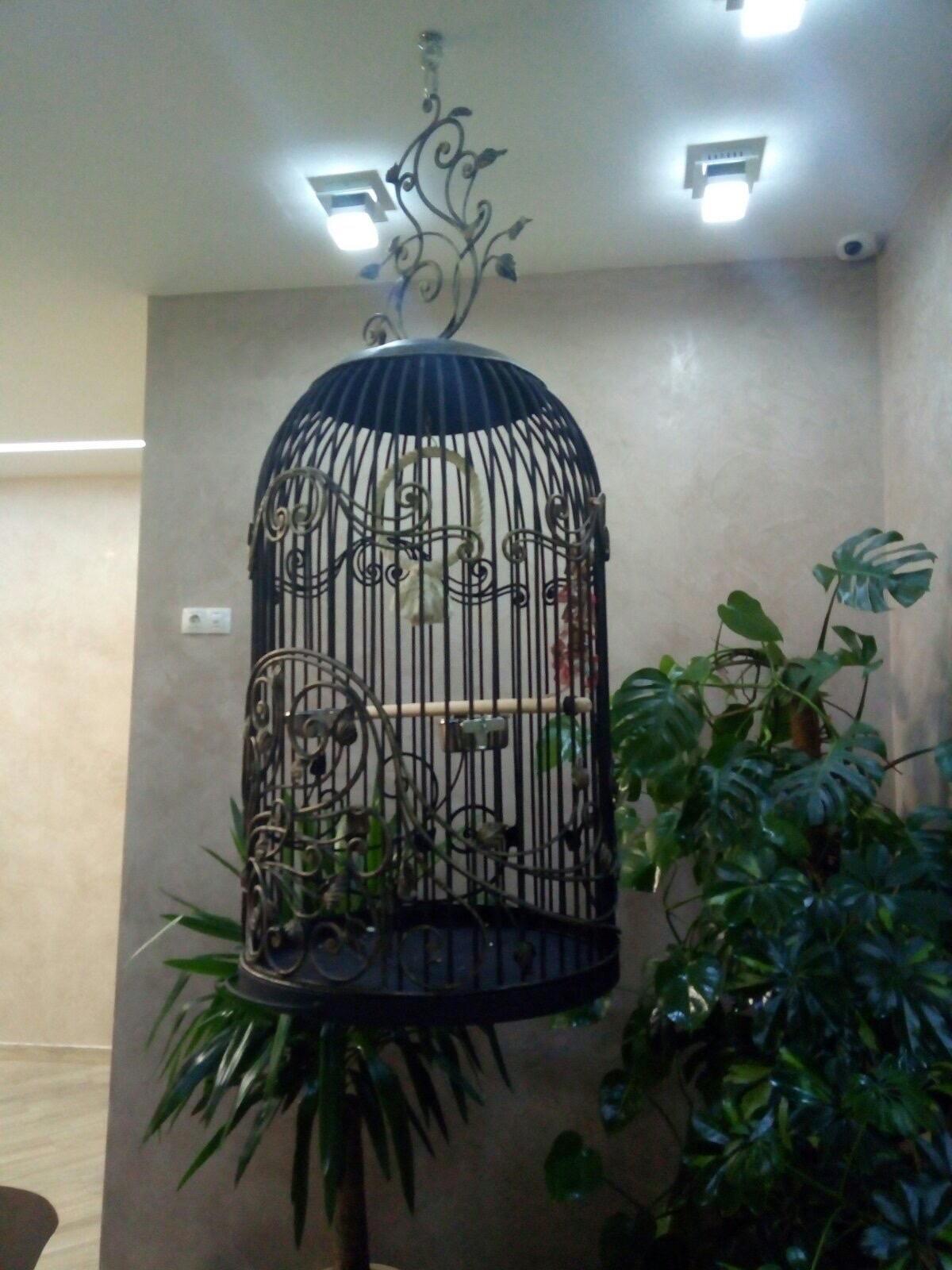 Кованая клетка для попугая, арт 50001